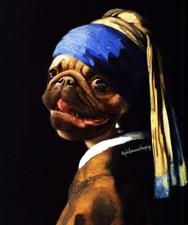 Pug with the Peal Earring