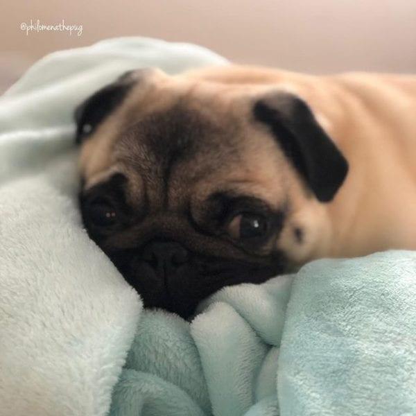 Monday mood 💤 💤