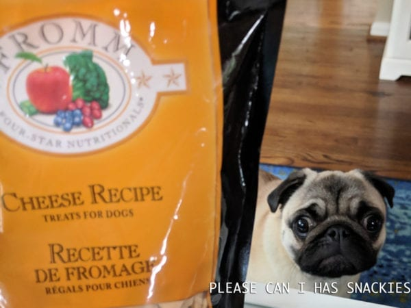 Review: Fromm Four Star Cheese Recipe Dog Treats
