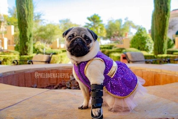 """I don't do fashion, I am fashion.""   -Coco Chanel"
